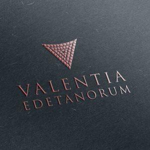 Vinos Valentia, packaging de productos