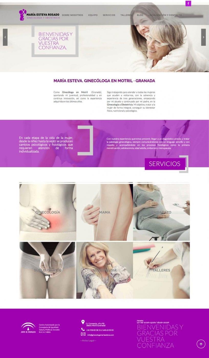 diseño de pagina web para clinica de ginecologia