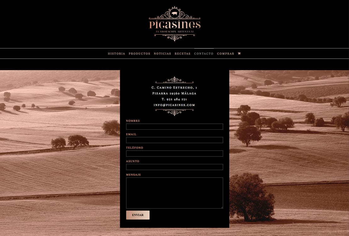 Picasines, diseño web, responsive