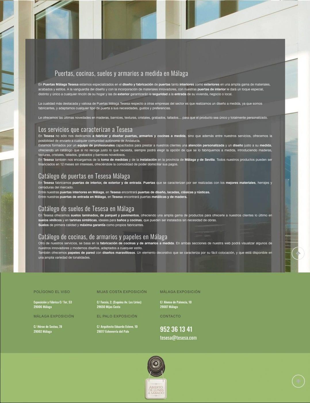 diseño web para tesesa